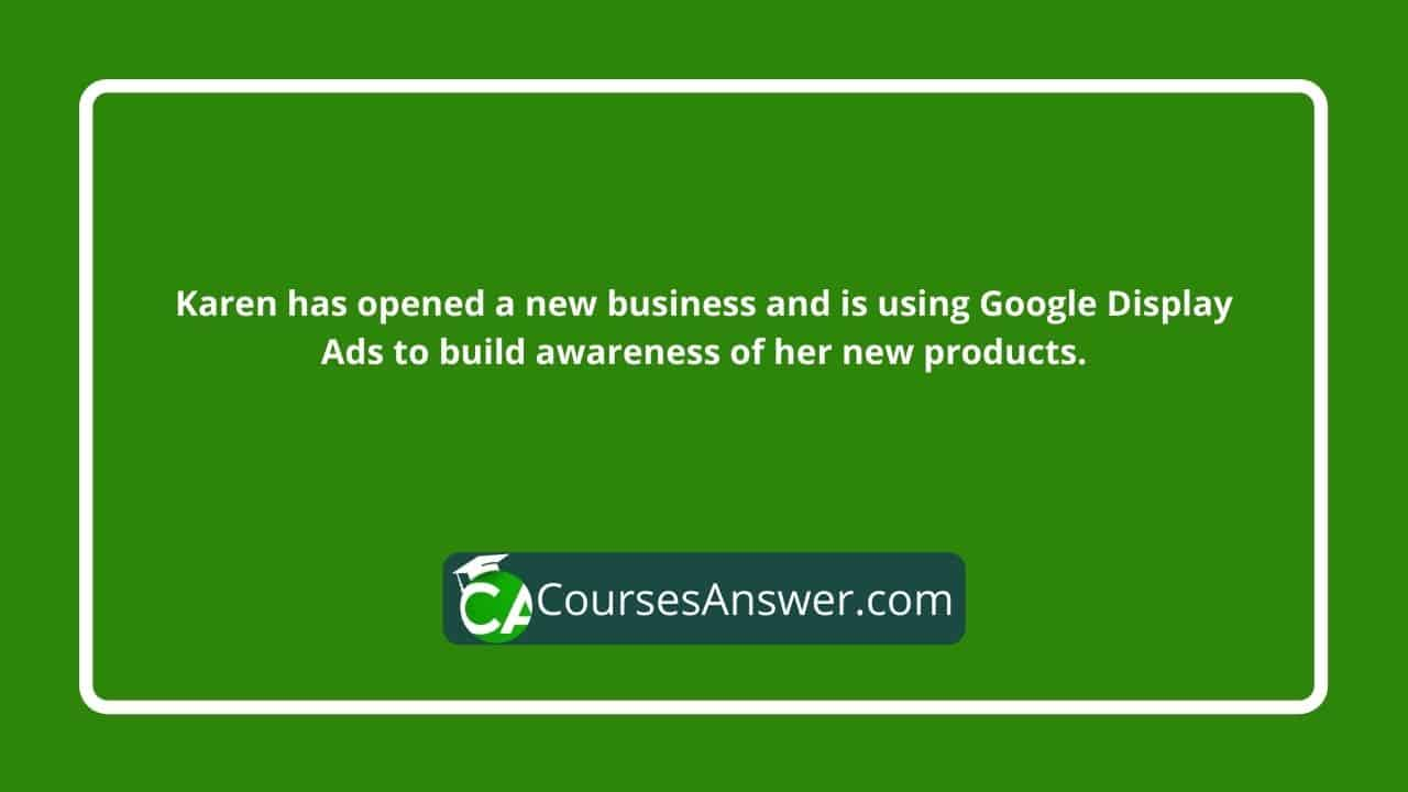 Karen has opened a new business and is using Google Display Ads to build awareness of her new products.